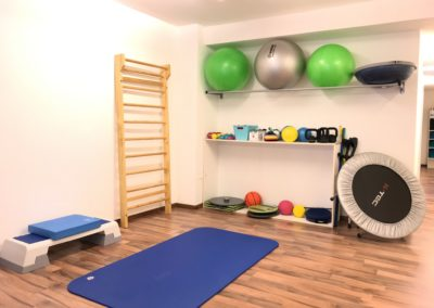 Cabinet Proactive Physio